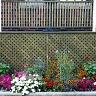 Garden - 2007