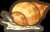 Whelk